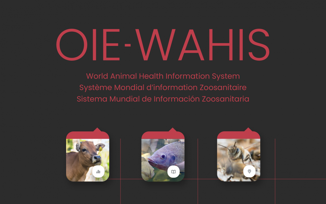 OIE launches new WAHIS: new era of digitally enhance animal health data